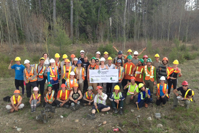 SFI world record most tree planted in an hour