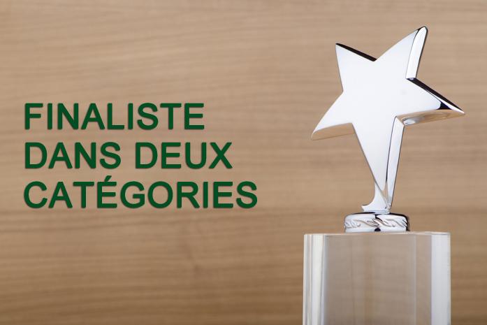 Résolu finaliste dans deux catégories au PPI Awards 2015