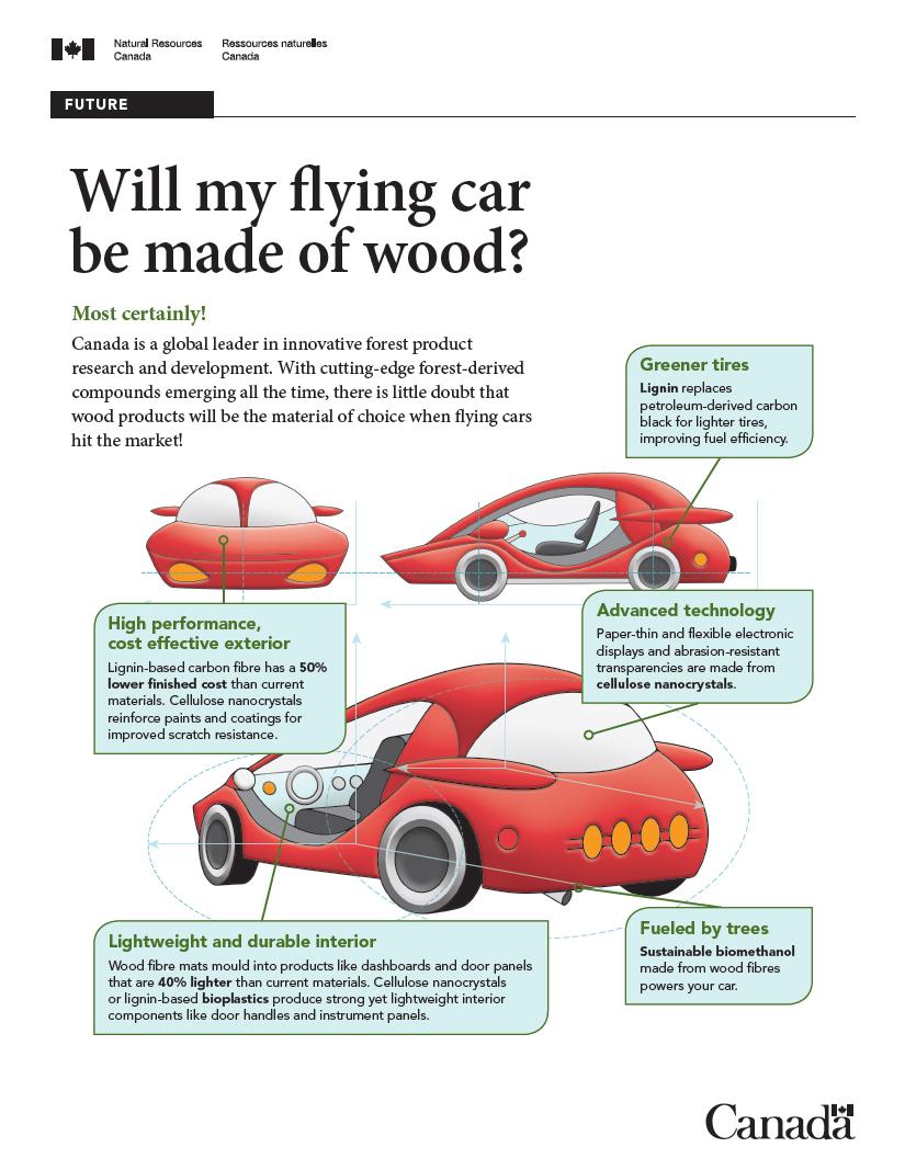 Car made of wood