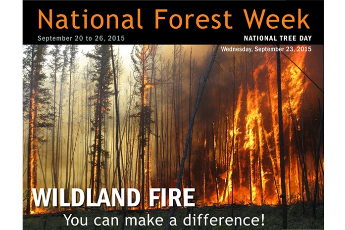 National Forest Week 2015